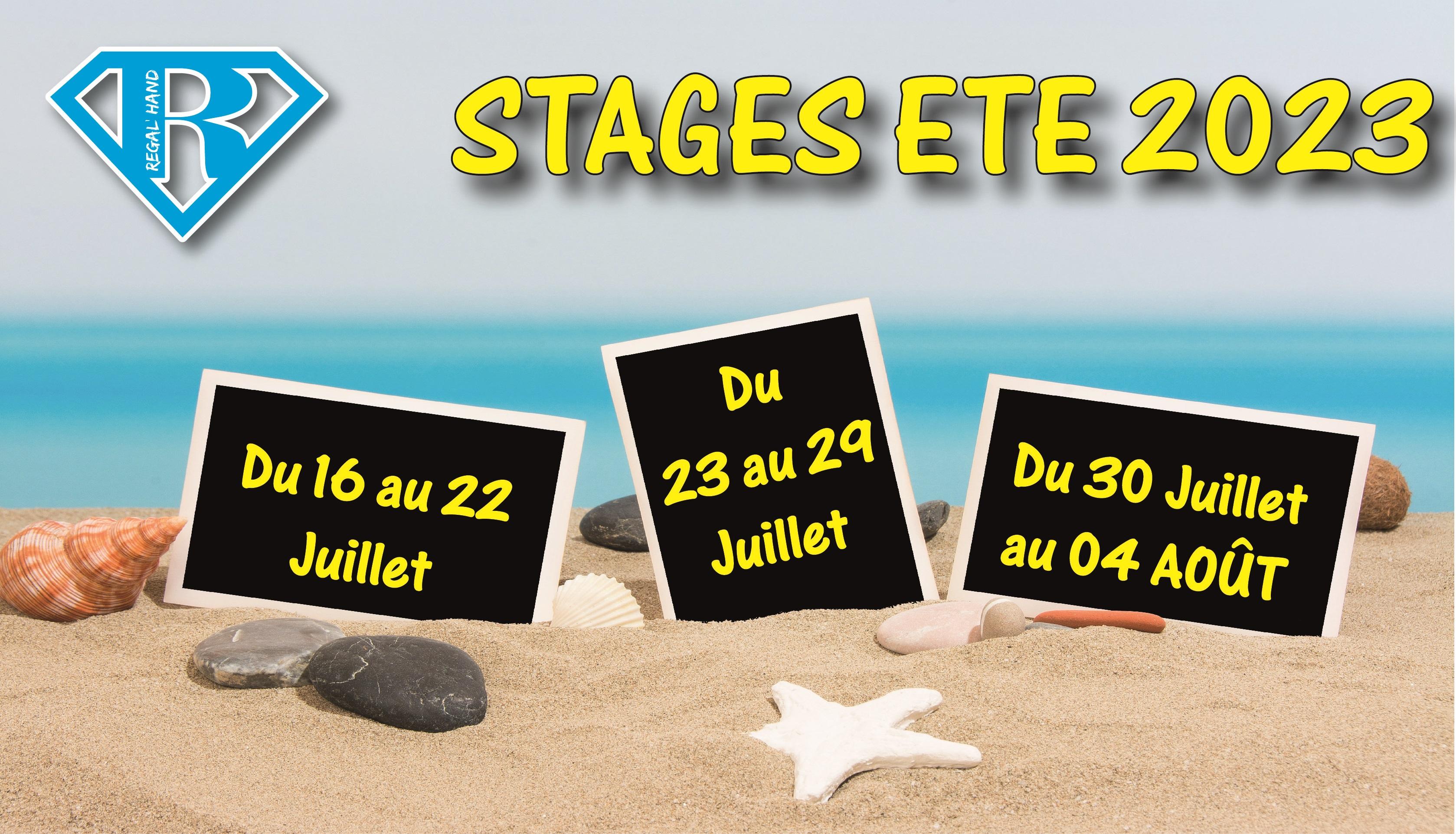 Stages d'été Régal'hand 2020